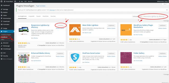 Galerie Beispiel - WordPress Plugin Responsive Lightbox by dFactory installieren